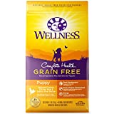 Wellness Complete Health Natural Grain Free Dry Puppy Food, Chicken &...