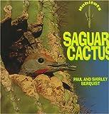 img - for Saguaro Cactus (Habitats) book / textbook / text book
