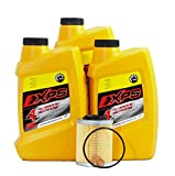 2012 Ski-Doo Renegade Sport 600 ACE Maintenance Kit