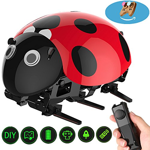 Cartoon RC Cars Ladybug Vehicles Radio Control Race Crawlers High Speed Stunt Trucks, with 2.4GHz Joystick Remote Control LED Light Robot Kits Black Friday Christmas Gifts for Kids to Build Age 7 + (Powered Rc Lamborghini Gas)