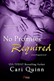 No Promises Required (Love Required Book 4)