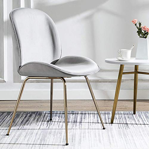 Art Leon Velvet Chair Soft Upholstered Modern Shell Beetle Leisure Chair with Gold Legs for Living Dining Room Bedroom Dresser (Silver Grey)