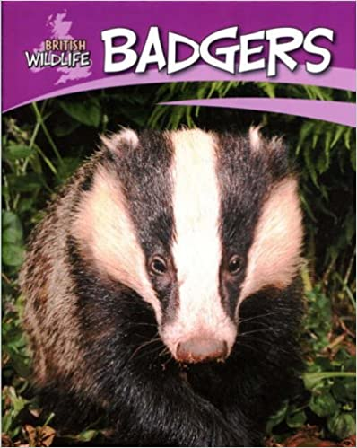 Badgers (British Wildlife)