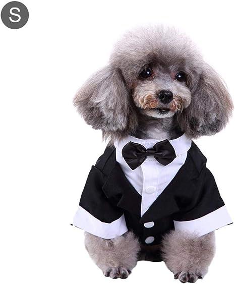 Bulary Elegante Traje De Corbata De Moño, Traje De Perro, Camisa ...