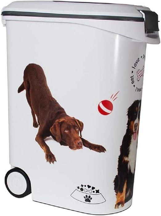 PaylesswithSS - Recipiente para Comida de Perro seco: Amazon.es: Productos para mascotas