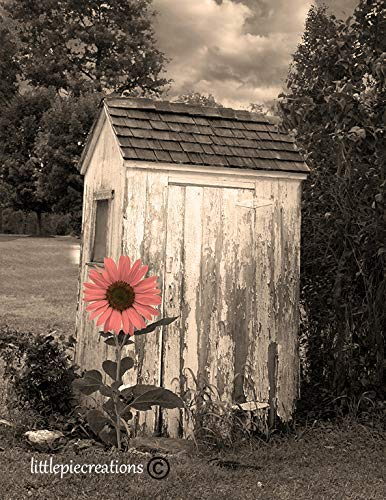 - Farmhouse Bathroom Wall Art, Sunflower Outhouse Country Theme Bath Artwork 8x10 Inch Picture With 11x14 White Mat