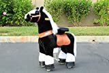 Beyond Shop Ponycycle Pony Cycle Ride On Horse No Need Battery No Electric Just Walking Horse BLACK WITH WHITE HOOFS - Size SMALL for Children 2 to 5 Years Old or Up to 55 Pounds