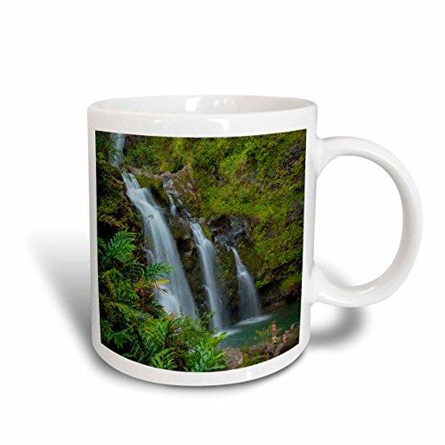 Hawaii Waterfall (3dRose mug_144172_1 Waikani Waterfalls, Hana Coast, Maui, Hawaii, USA Us12 Dpb2642 Douglas Peebles Ceramic Mug, 11-Ounce)