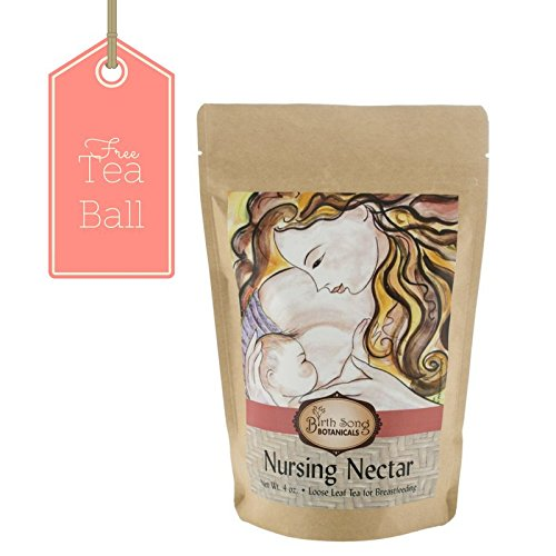 Birth Song Botanicals Nursing Nectar Best Breastfeeding Tea with Fenugreek & Chamomile, 40 Servings per - Nectar Beauty Shop