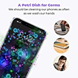 HoMedics UV-Clean Phone Sanitizer | Faster Than Any UV Sanitizer On The Market | Kills Up to 99.9% of Bacteria & Viruses at The DNA Level | Mercury and Chemical Free