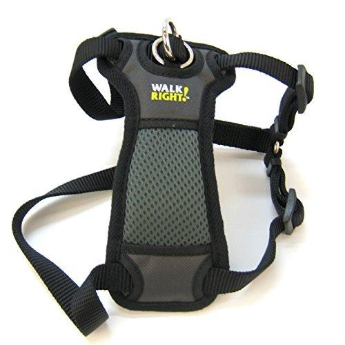 Coastal Pet Walk Right! Front-Connect Padded Dog Harness (Medium - 20''-30'' girth, Black)