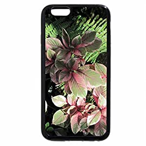 iPhone 6S / iPhone 6 Case (Black) A perfect day at Edmonton garden 24