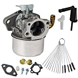 Dosens Carburetor for Briggs & Stratton 696981 698860 790182 694508 795069 698859 790180 790290 693865 697354 698474 791991 698810 698857 698478 694174 690046 693751 Craftsman Tiller Intek 791077 Carb