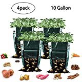 Potato Grow Bags, 10 Gallon Garden Planter Plant Growing Bag with Flap and Handles Heavy Duty and Durable Potato Pots for Vegetables, Fruit, Carrot, Tomato, Onion, 4 Pack