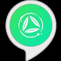 Bambú: meditaciones guiadas y sonidos relajantes