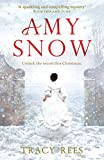 Amy Snow: The Richard & Judy Bestseller (kindle edition)