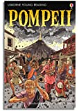 Pompeii (Young Reading (Series 3)) (3.3 Young Reading Series Three (Purple))