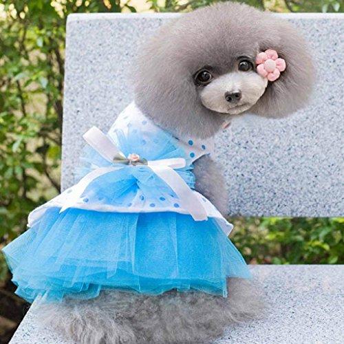 Image of HP95(TM) Pet Dog Dress, 2015 Romantic, Lovely, Puppy Dog, Princess, Tutu, Dress (L, Blue)