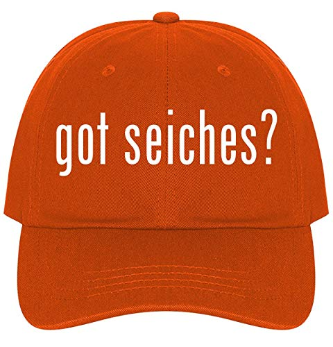 (The Town Butler got Seiches? - A Nice Comfortable Adjustable Dad Hat Cap, Orange)