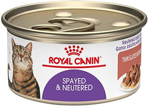 Amazon.com : Royal Canin Spayed/Neutered Canned Cat Food, 3-Ounce Pack Of 24 : Canned Wet Pet Food : Pet Supplies