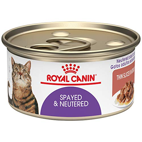 (Royal Canin Feline Health Nutrition Spayed & Neutered Thin Slices in Gravy Canned Cat Food, 3 Ounce Can (Pack of 24))