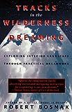 Tracks in the Wilderness of Dreaming, Robert Bosnak, 0385315295