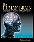 The Human Brain 9780761920618