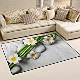 WellLee Area Rug,Beautiful Spa Bamboo On Light Floor Rug Non-slip Doormat for Living Dining Dorm Room Bedroom Decor 60x39 Inch
