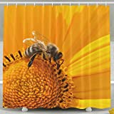Best Burt's Bees Baby Shower Gifts - Xiaobaby Bee Nectar Collecting Nectar Yellow Pollen Flowers Review