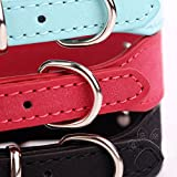 Pets-House-Dog-Collars-for-Small-Dogs-Red