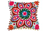 Best Bohemian Pillows - Pom Pom Pillow Cover, Suzani Pillows 16x16, Outdoor Review