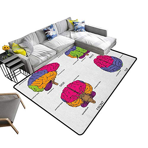 (Educational Custom Pattern Floor mat Human Brain from All Sides with Sections in Explanatory Texts 78
