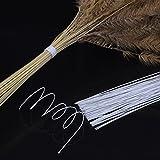 EBOOT Stem Wire Floral Wire 14 Inch 26 Gauge