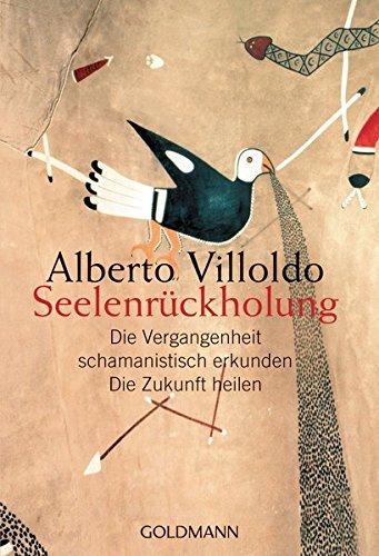 Seelenrückholung: Die Vergangenheit schamanistisch erkunden - Die Zukunft heilen Taschenbuch – 10. Juli 2006 Alberto Villoldo Andrea Panster Goldmann Verlag 3442217652