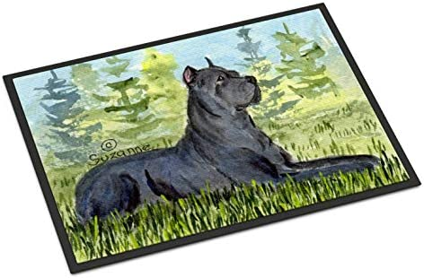 Caroline s Treasures SS8682MAT Cane Corso Indoor Outdoor Mat 18×27 Doormat, 18H X 27W, Multicolor
