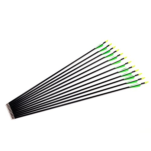 12 pcs Hunting Archery Fiberglass Arrows Field Point Target Arrow Practise