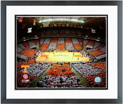 Tennessee Volunteers Thompson Bolling Arena Photo 12.5