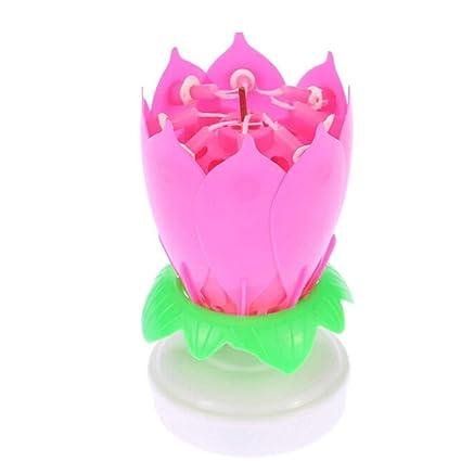 heliltd 1 pieza Nueva vela Electrónica de Cumpleaños Velas ...