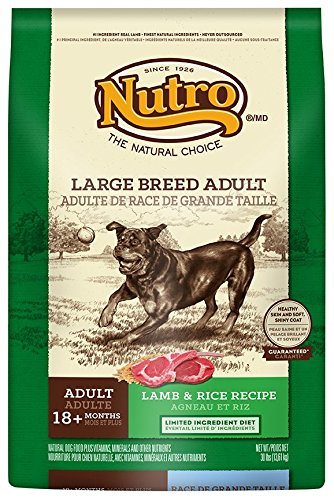 NUTRO Large Breed Dry Dog Food, Lamb and Rice 30 lbs. (Breed Adult Lamb)