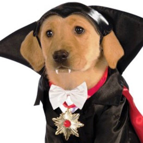 Classic Movie Monsters Pet Costume, Medium, Dracula - http://coolthings.us