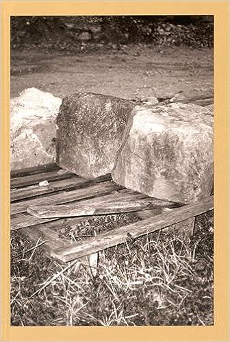 Livre Le discours à l'oeuvre : Tome 2, Université d'été 2013 pdf, epub