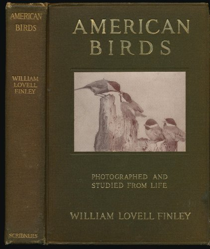 American birds: Studied and photographed from life
