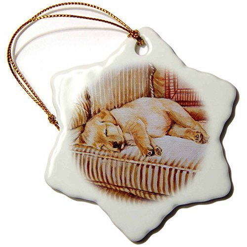 pansy Christmas Gifts Little Yellow Lab Puppy Sleeping In The Sun On A Golden Striped Couch Xmas Porcelain Decor Snowflake Ornament Home Decorations Hanging Crafts