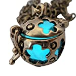 UMBRELLALABORATORY Wishing ball Fairy Magical Fairy Glow in the Dark Necklace-aqua-bronze 6