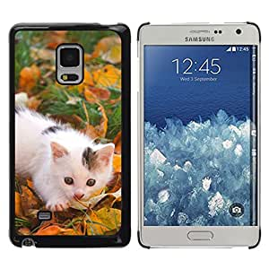 TECHCASE**Cubierta de la caja de protección la piel dura para el ** Samsung Galaxy Mega 5.8 9150 9152 ** Kitten White Grey Spots Grass Autumn Photot