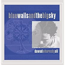 Blue Walls and the Big Sky by Dawud Wharnsby (1995-08-02)