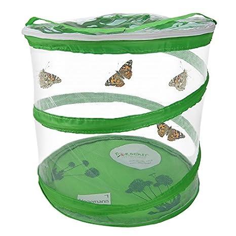 Hagemann Schmetterlings- und Insektennetz, Aufzuchvoliere