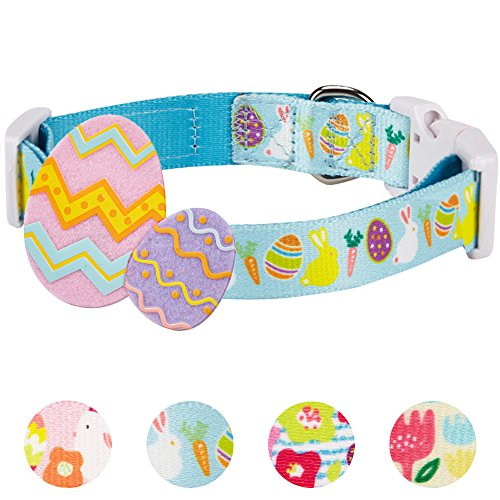Easter Spring Bunny Dog Collar