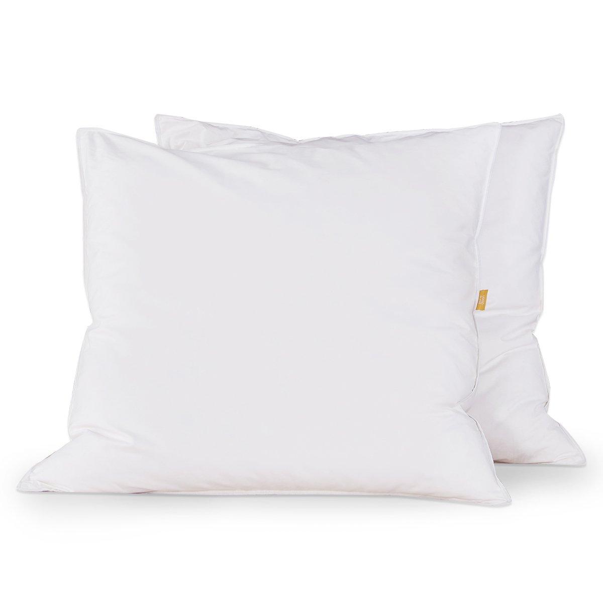 daunen kopfkissen 80x80 test wo entsorgt man alte bettdecken ikea kleiderschr nke 2015. Black Bedroom Furniture Sets. Home Design Ideas
