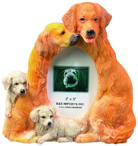 Golden Retriever Picture Frame Holds Your Favorite 2 x 3 Inch Photo, Hand Painted Realistic Looking Golden Retriever Family Surrounding  Your Photo. This Beautifully Crafted Frame is A Unique Accent To Any Home or Office. The Golden Retriever Picture Frame Is The Perfect Gift For Golden Retriever Owners And Lovers! (Best Looking Golden Retriever)